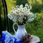feliz lunes maravillosa semana